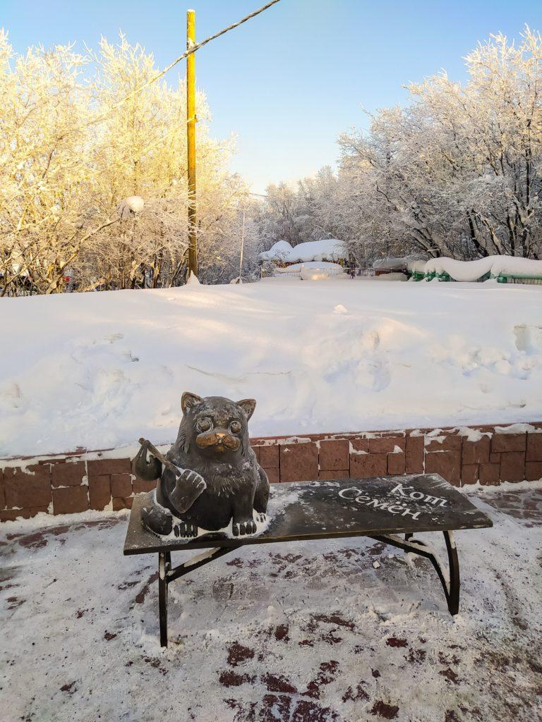 Мурманск кот Семён