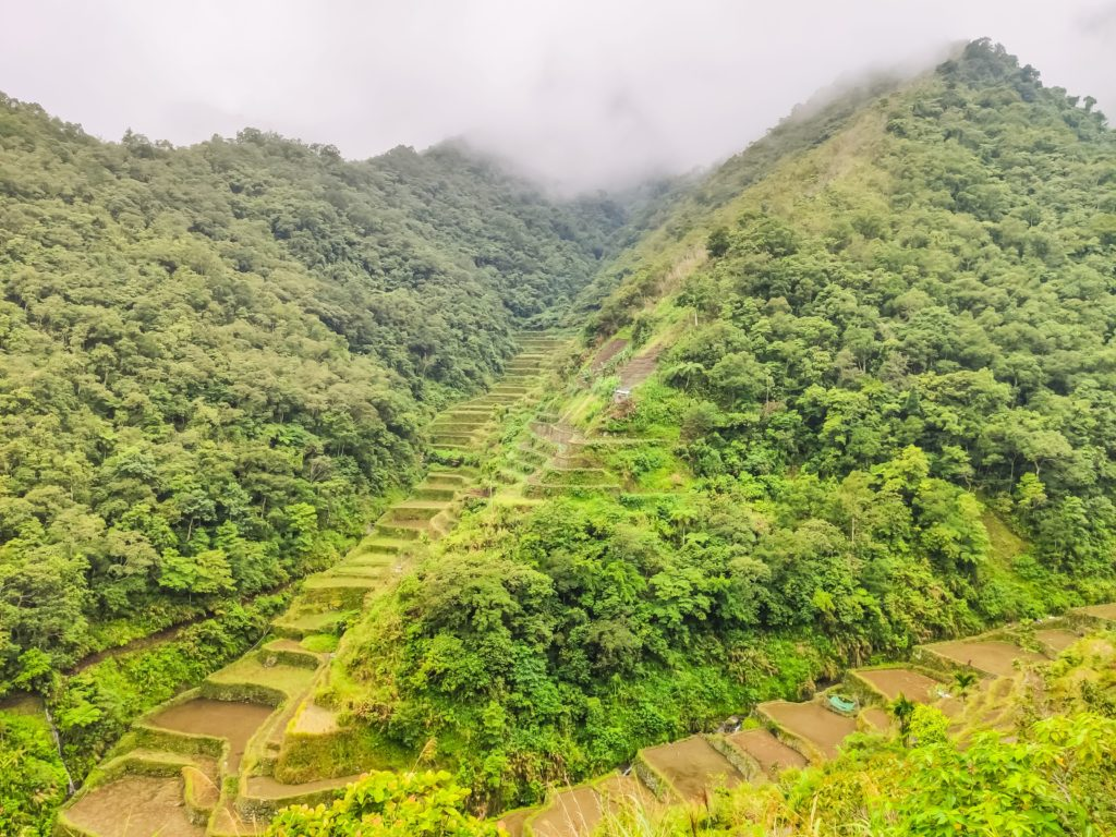 Рисовые террасы в Бануэ