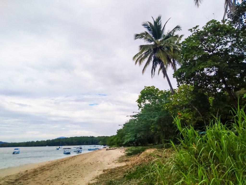 Коста-Рика джунгли
