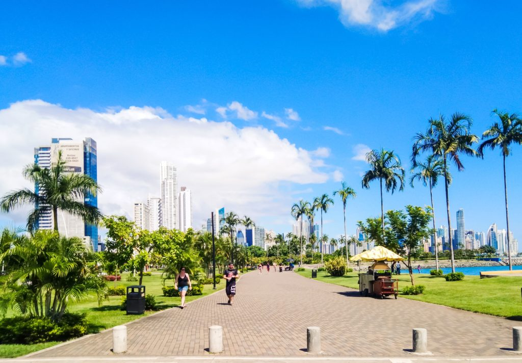 Набережная Панамы с пальмами