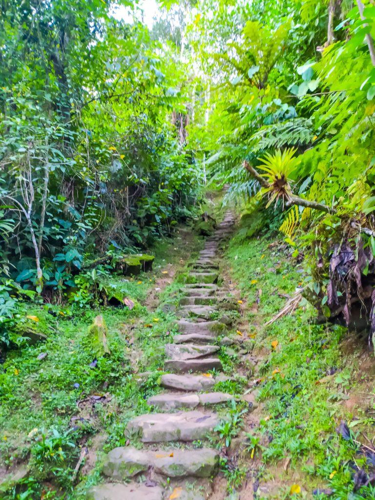 Лестница к Сьюдад-Пердида