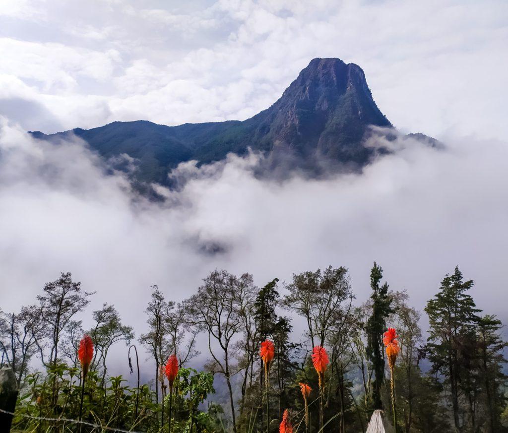 Вершину Cerro Morrogacho