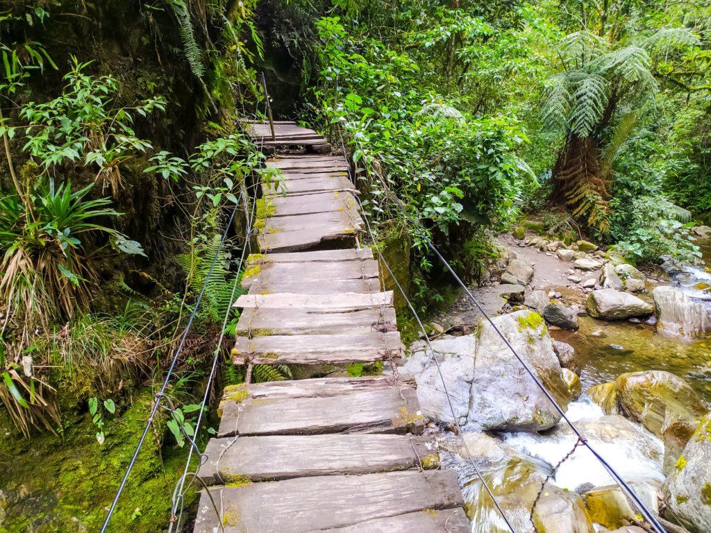 Долина Кокора река Киндио