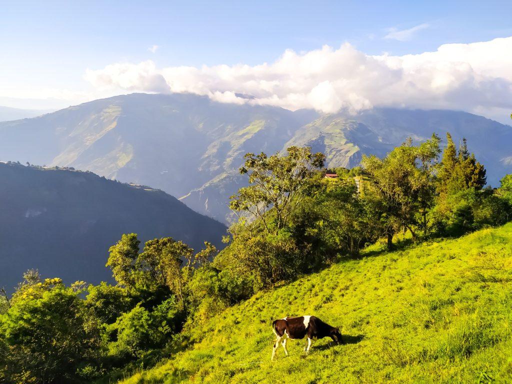 Горные пейзажи Баньоса