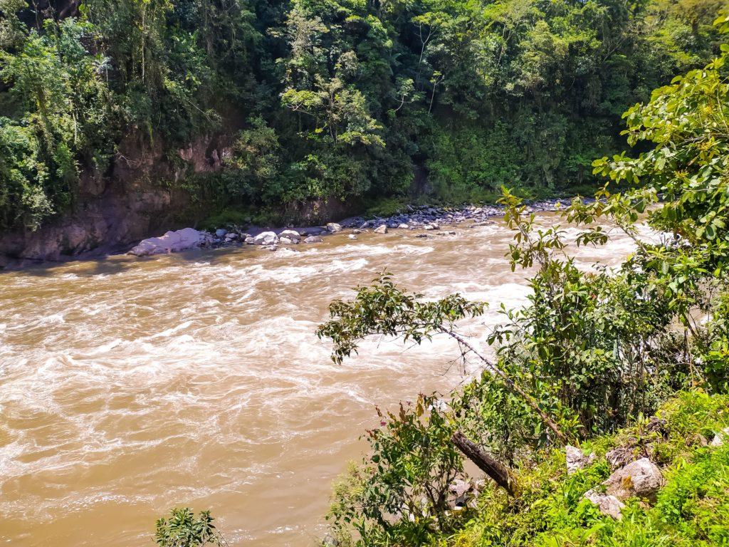 Бурная река в джунглях